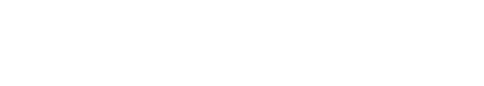 Area Agency On Aging Association of Michigan